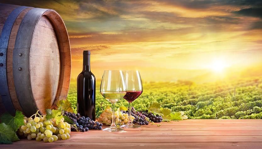 viti vino una botte bottiglie vino